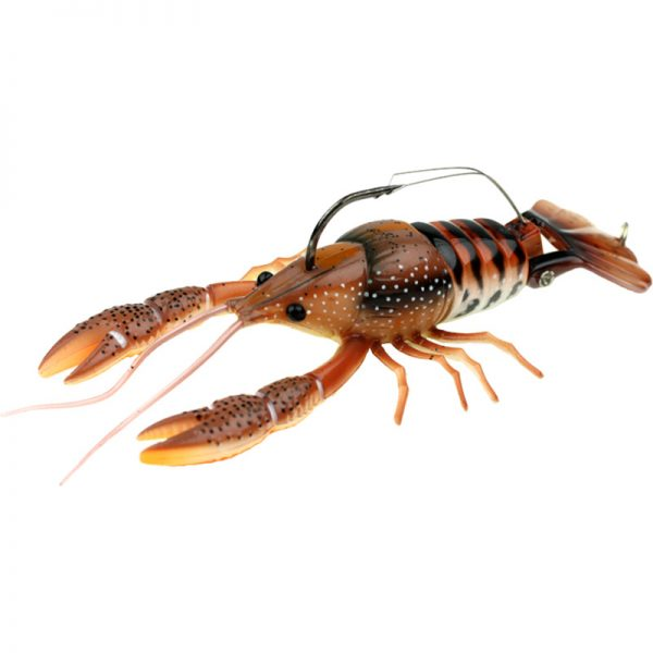 DahlbergClackinCrayfish photo